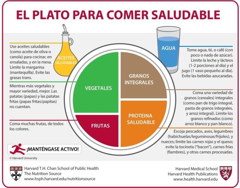 Spanish_alimentació plat